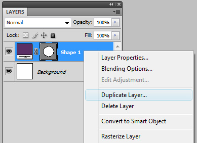 Right click the layer in the layers palette and choose duplicate