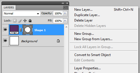 Duplicate Layer using Layer Options