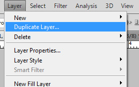 Duplicate the layer by using the main menu options