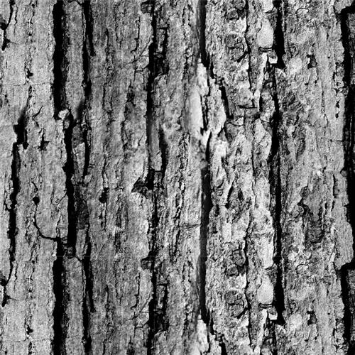 woodtexture10